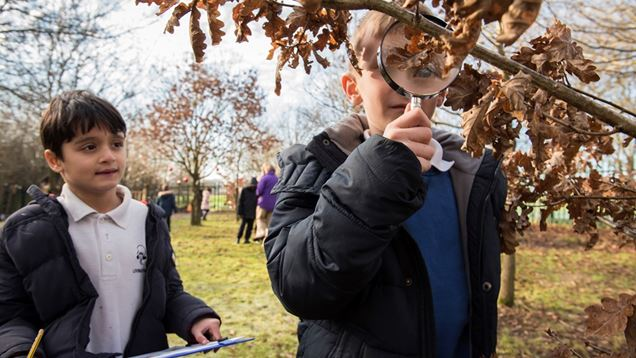 RSPB and Aldi – Giving Nature a Home in Schools