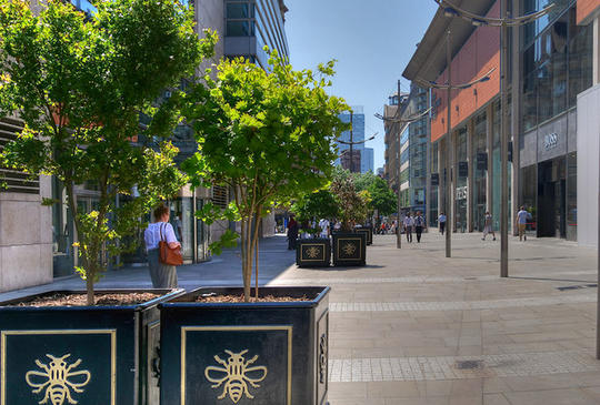 Potted trees on New Cathedral Street, Manchester