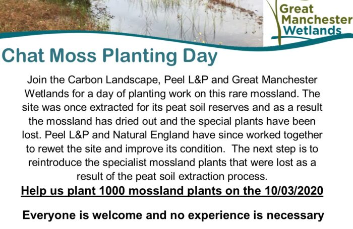 Chat Moss Planting Day – 10th March
