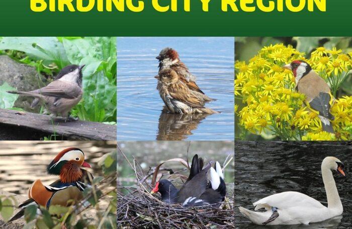 Greater Manchester Birding City Region