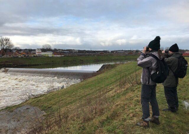 The Wonderful Winter Wetland Bird Blitz