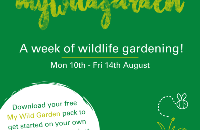 My Wild Garden Week Launches 10th to 14th August