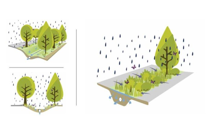 Why Do We Need Sustainable Drainage Systems?