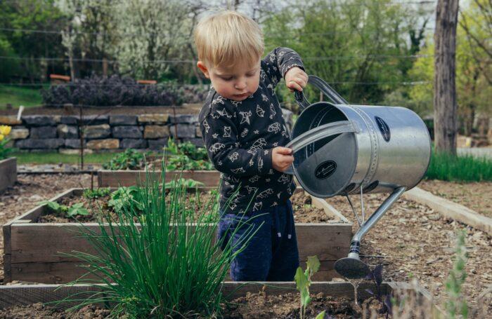 Little boy watering plants
