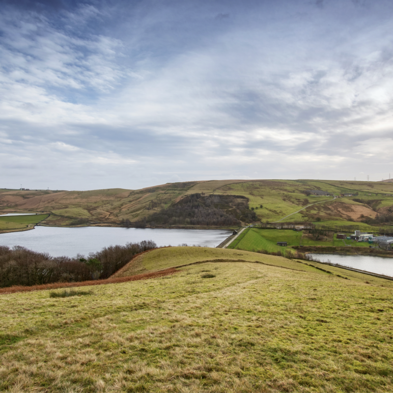 Photograph of a reservoir surrounded by green space