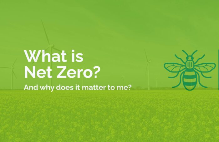 Image of Green Bee with caption Bee Net Zero